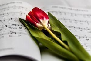 music-999135_640